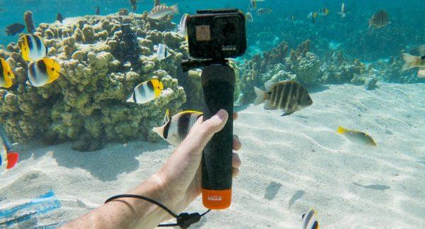 Gopro The Handler - Plaza Cameras